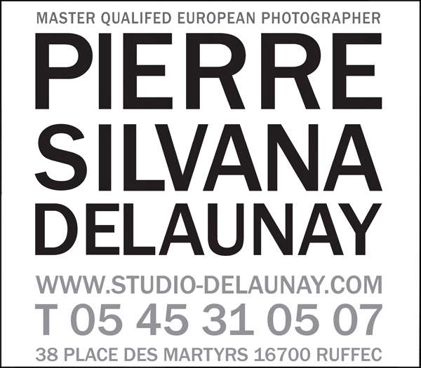 logo-Delaunay