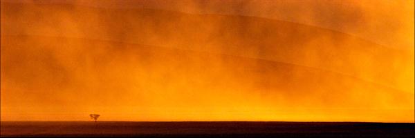 Sandscapes_Namib-Naufluft_désert