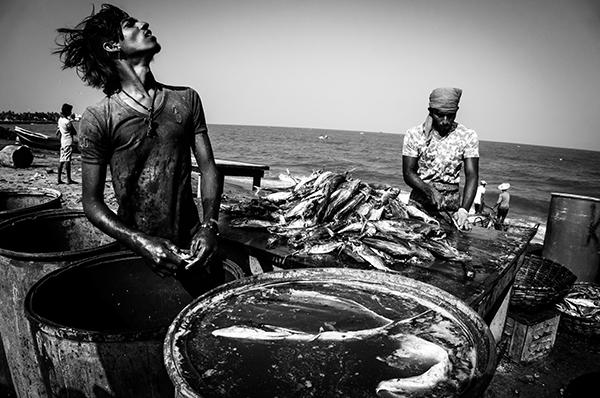 Le village de Nilaveli - côte Est du Sri Lanka